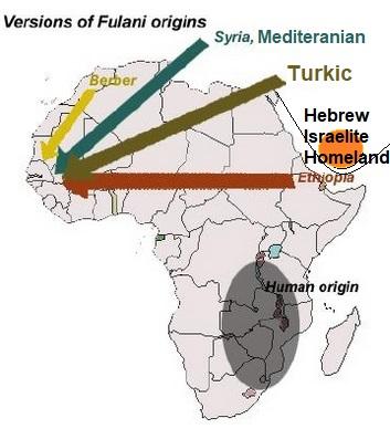 اصول الفولاني الابيض الاربعة العبرية التركمانية الامازيغية و المتوسطية